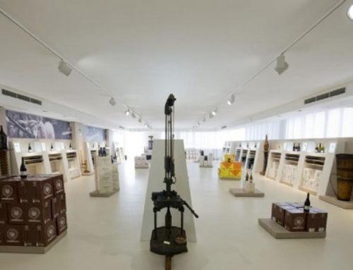Cantina Museo Gavioli