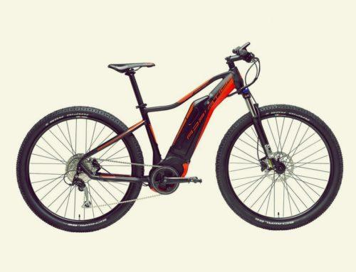 BIPA (bicicletta a Pedalata Assistita)